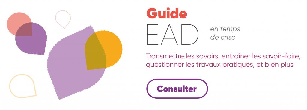 Guide EAD en temps de crise - Transmettre les savoirs, entraîner les savoir-faire, questionner les travaux pratiques, et bien plus